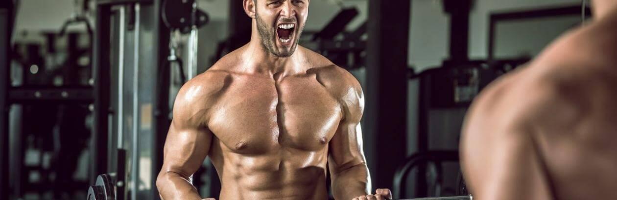 budowanie+masy+mięśniowej