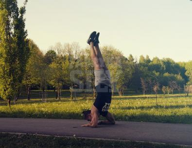 Tiger Hand Stand