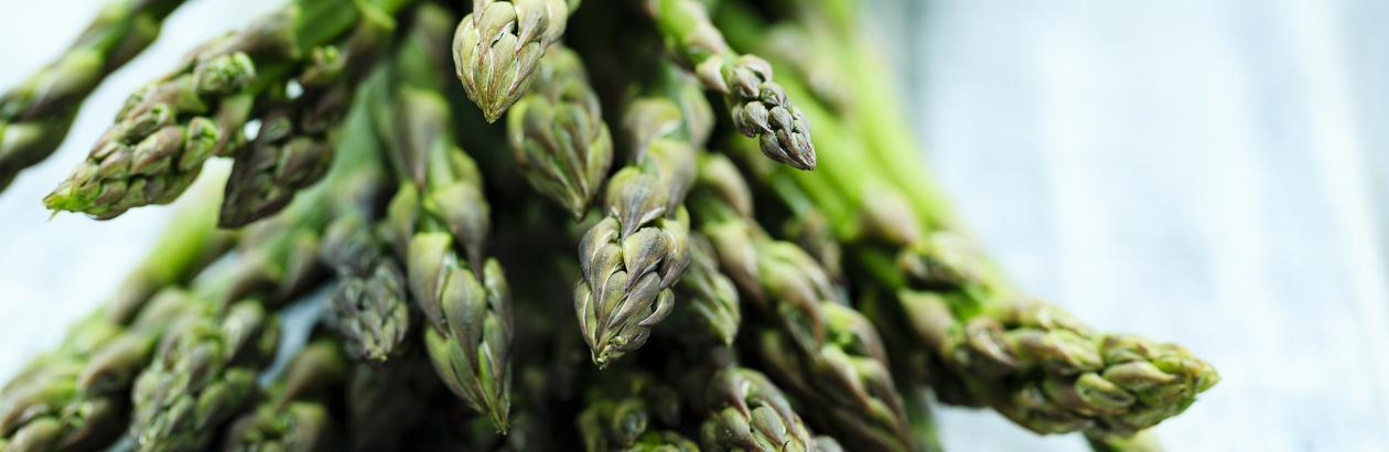 A d-vitaminhiány hirtelen fogyást okozhat?. Az articsóka virág fogyni szolgál