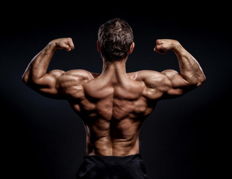 ćwiczenia fizyczne, aby zwiększyć mocy i erekcję